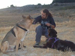 Jerarquía Canina