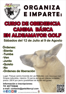 cartel-curso-aldeamayor3